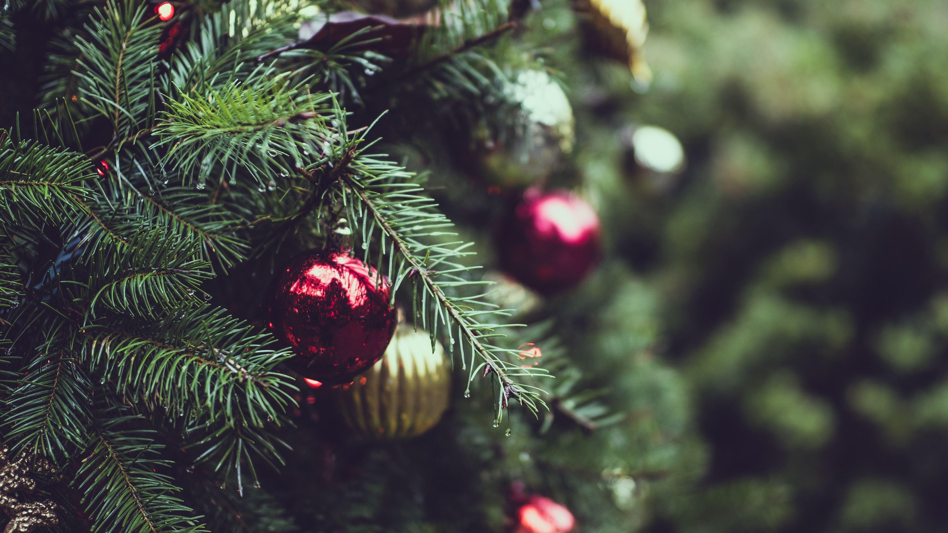 Christmas  Erguyon2Vma